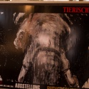 Vernissage Tierisch Gut / Kalender 2015 • 101 - 103